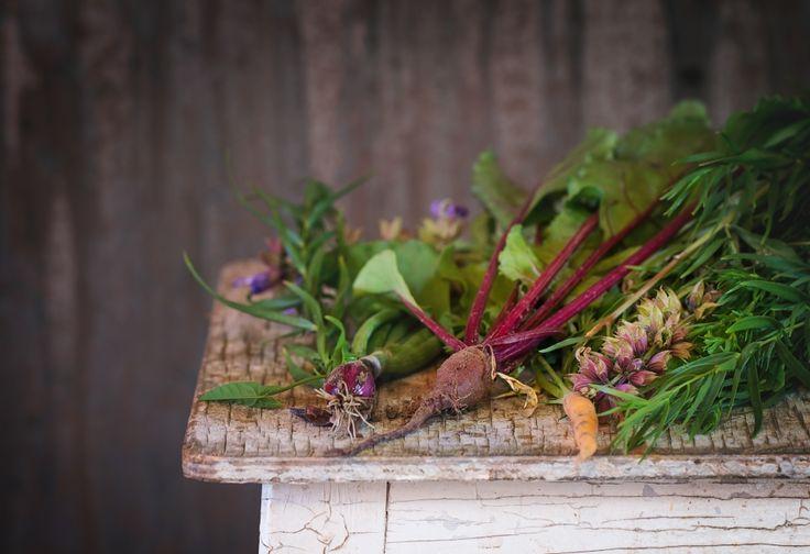 Le Top 10 des plantes qui aident à faire perdre notre excès de graisse (elles sont dans votre cuisine)