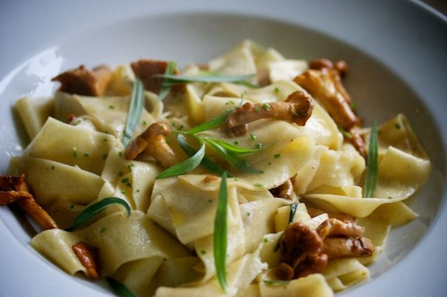 pasta with chanterelles and tarragon