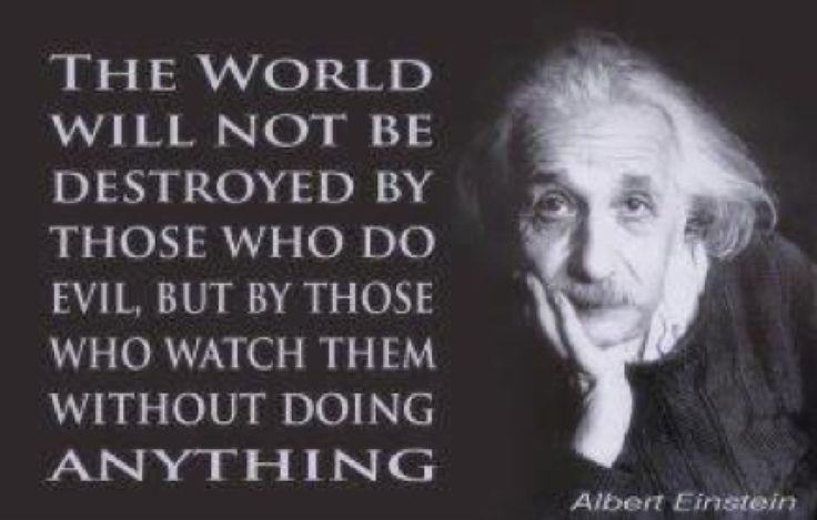 einstein quote images | Einstein quote | Losing In The Lucky Country