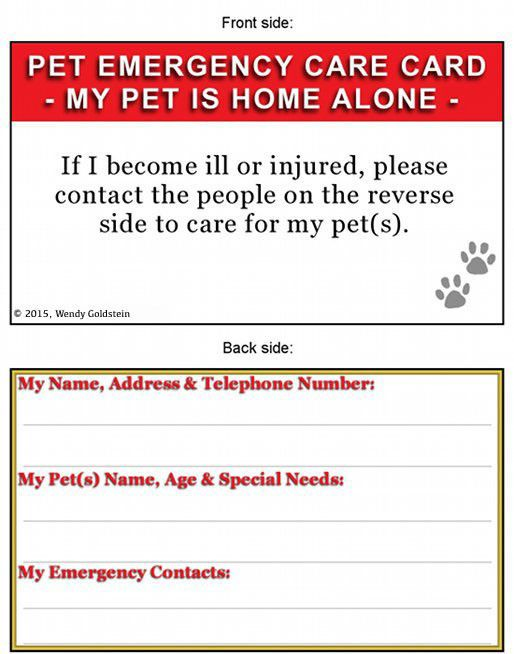 Pet Emergency Care Card 2 Cards Cas House Sitters And