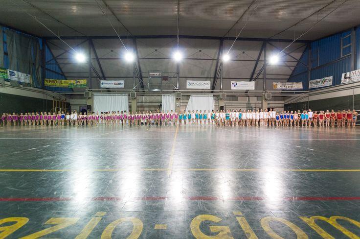 SAGGIO 2014 (oltre 100 ginnaste...)