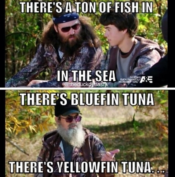 Duck dynasty- this to match the 50 shades of grey conversation. :)