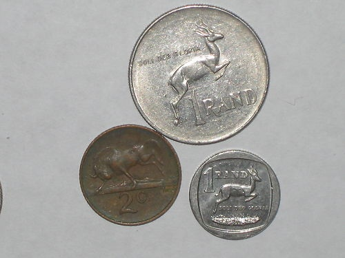 South Africa Animal Coins   eBay