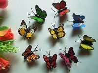 Fridge Magnet 10 Small Butterfly Plastic 3-d Creative Fridge Stickers