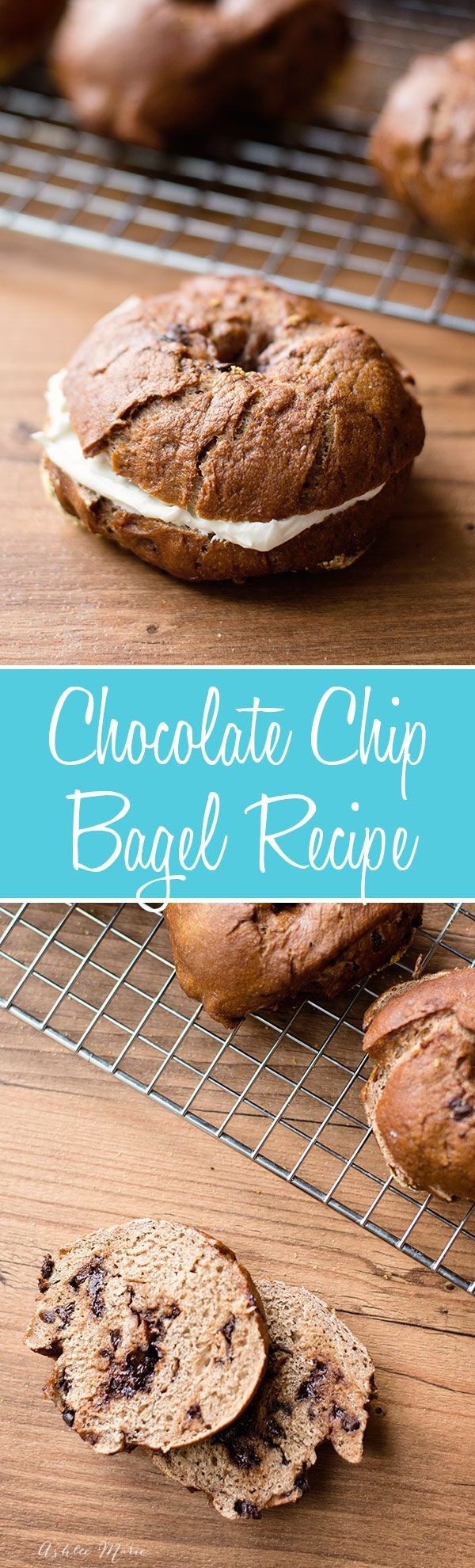 I love bagels, in every flavor, but my favorite is always the sweet bagels, this chocolate chip bagel recipe is a huge favorite at our house