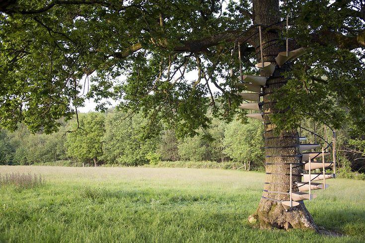 TasarımcıThor ter Kulve ve Robert McIntyre ağaçların etrafında dönen spiral şeklinde merdiven tasarladılar. Kulve ve McIntyre'ninCanopyStairadını verdiği merdivenler ağaçlara zarar vermeden kola...