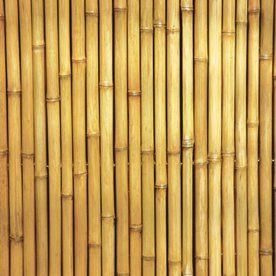 Textura Bamboo Texturas De Madera Pinterest Bamboo