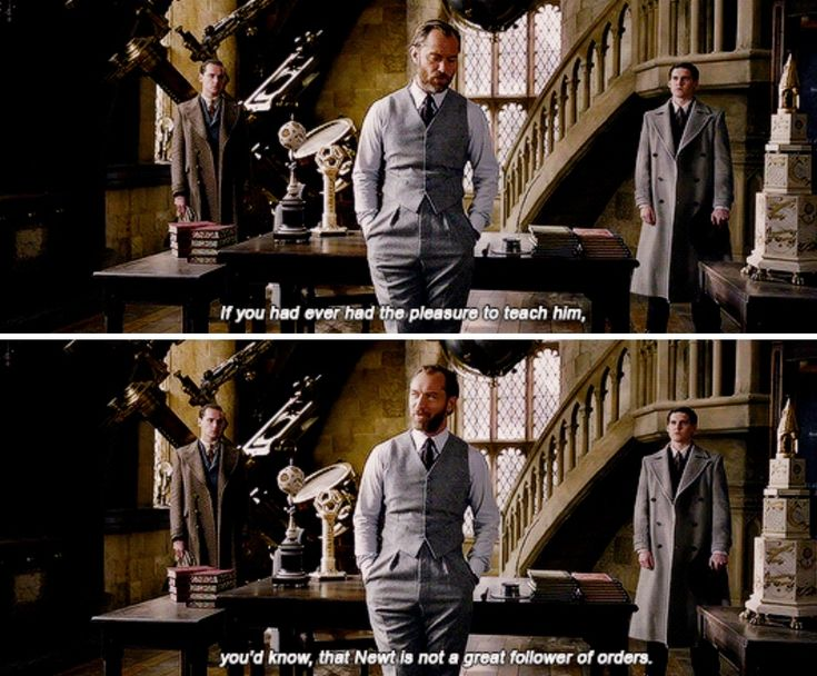 Fantastic Beasts: The Crimes of Grindelwald - There's a rumour that Newt Scamander is headed to Paris. I know he's working under your orders. What do you have to say for yourself, Dumbledore?