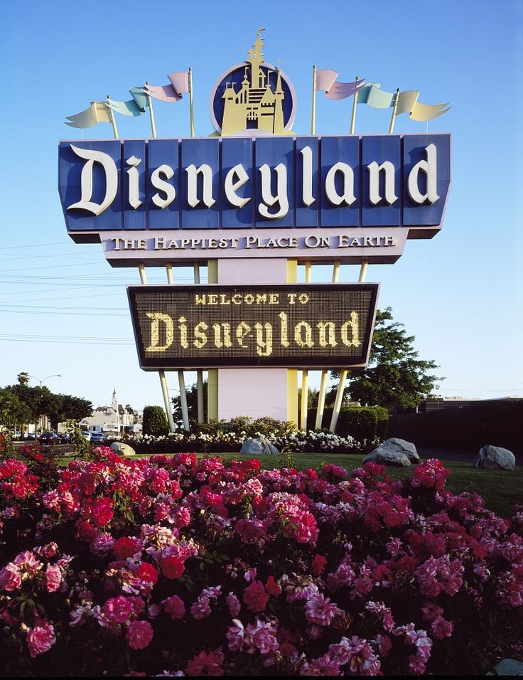 disneyland vacation essay