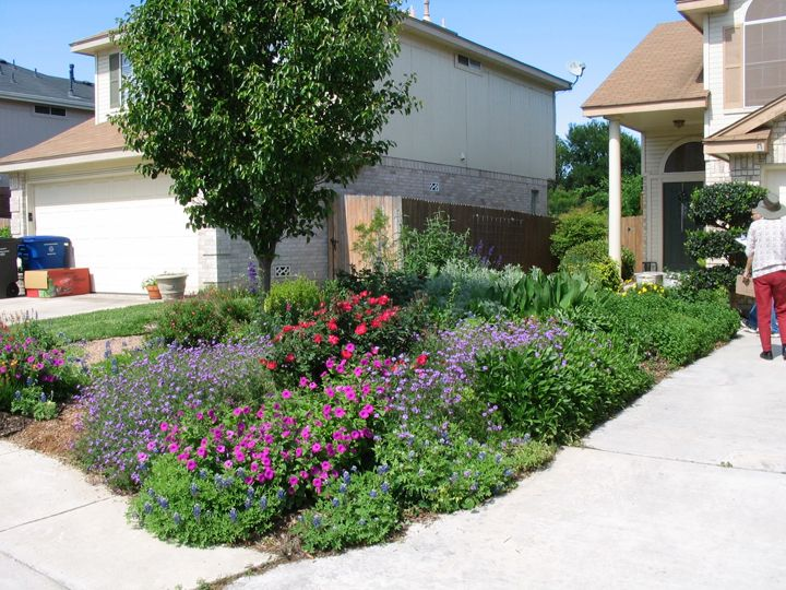 Xeriscape mark peterson from saws encourages beautiful for Home turf texas landscape design llc