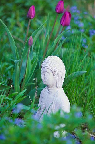 ...: Buddhism Spiritual, Buddha Buddhism, Prune, Sacred Gardens, Buddha Statues, Meditation Gardens, Peace Buddha, Gardens Buddha, Statues Art