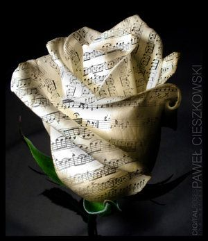 I love the look of this paper rose, but it doesn't have a tutorial. I'll have to give it a try anyways though, and free-style it :)
