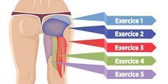 Découvrez les 5 exercices les plus efficaces pour muscler vos fessiers, et brûler la graisse de votre culotte de cheval !