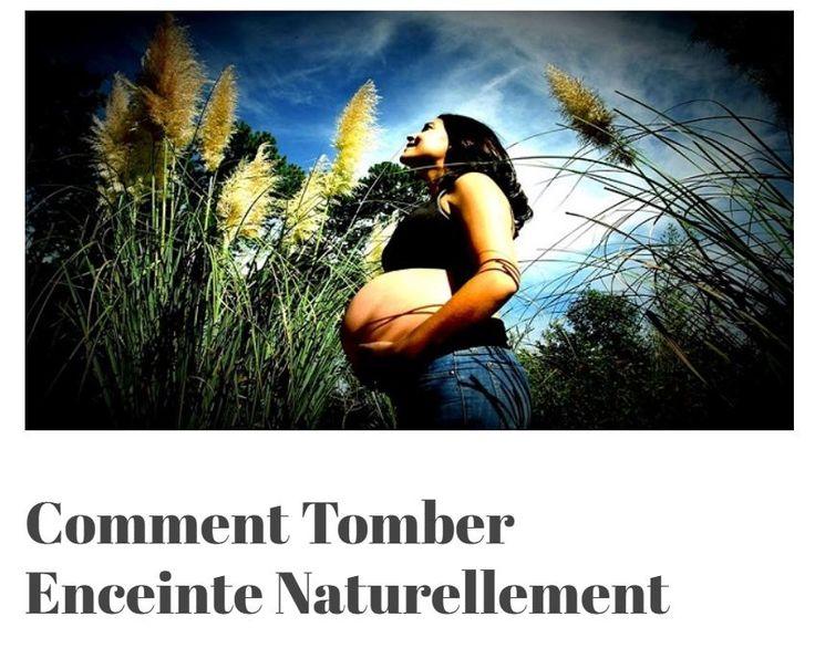 Comment Tomber Enceinte Naturellement. Découvrez tous les secrets des méthodes naturelles de traitement de l'infertilité.