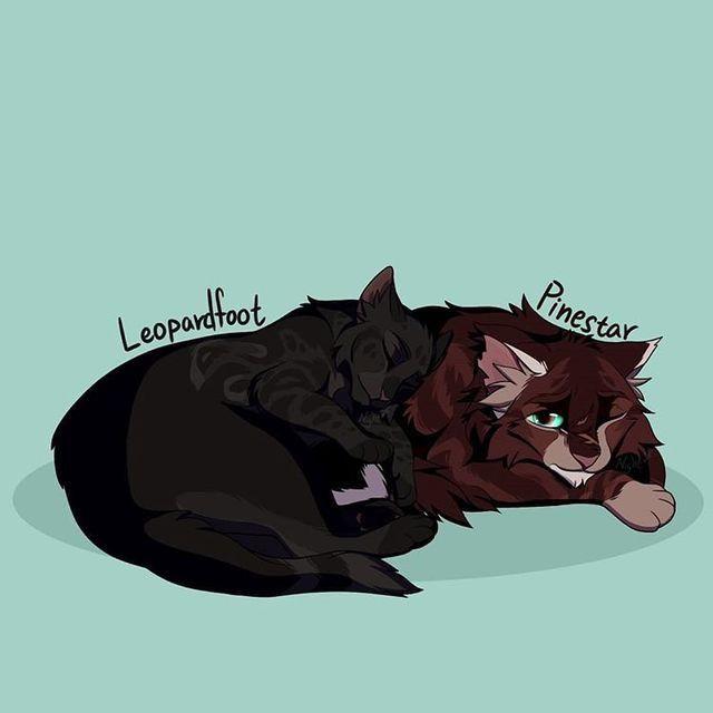 Leopardfoot x Pinestar   Warrior cats comics, Warrior cats books, Warrior  cat memes