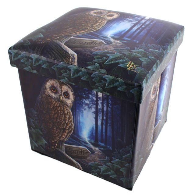 Wholesale Way of the witch storage box - Something Different