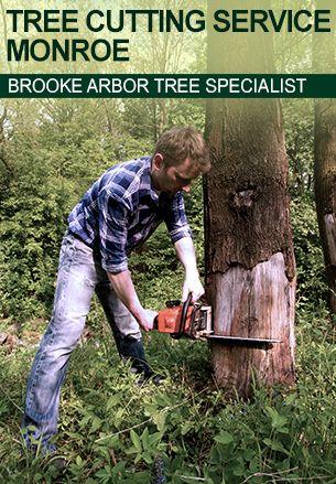 Tree Cutting Service Monroe