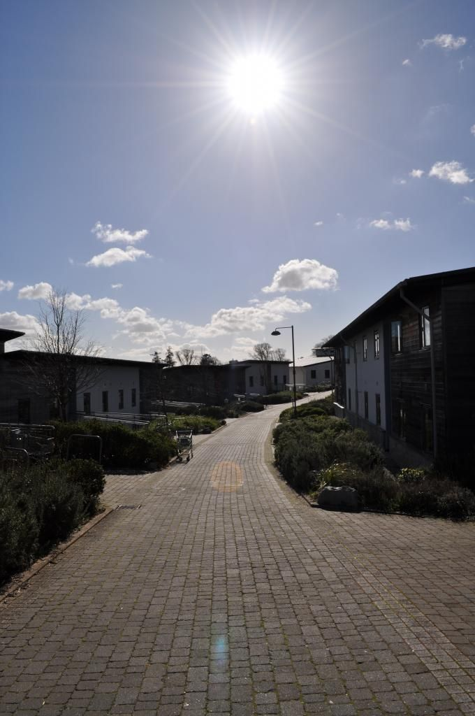 Glasney Student Village