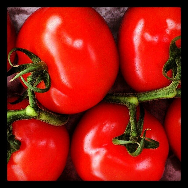 I say: tomato