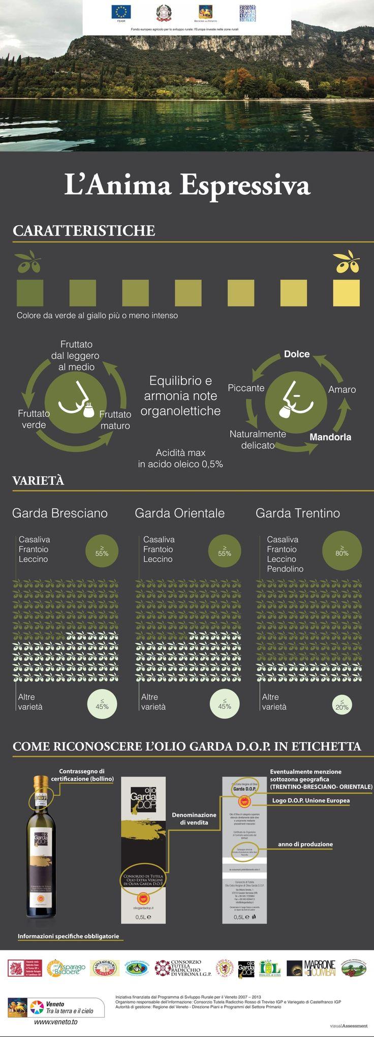 olio garda dop infografica 3