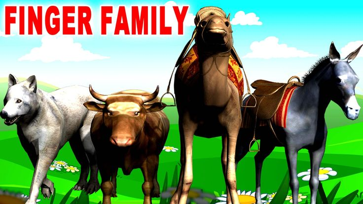 Domestic Animals Finger Family Rhymes | Cow Horse Chicken Sheep | Finger...