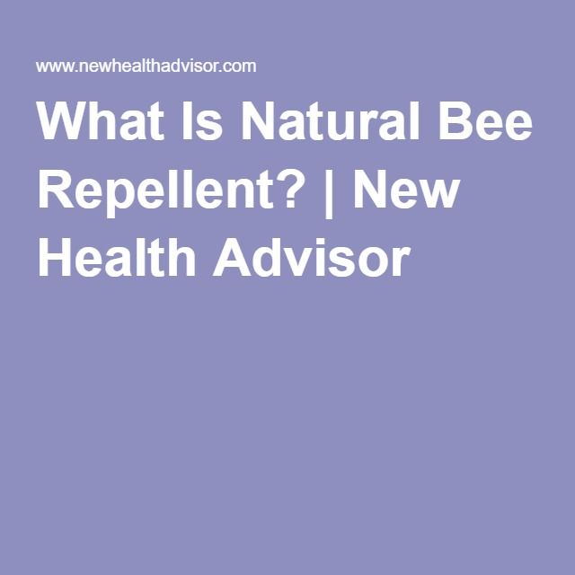 What Is Natural Bee Repellent? | New Health Advisor