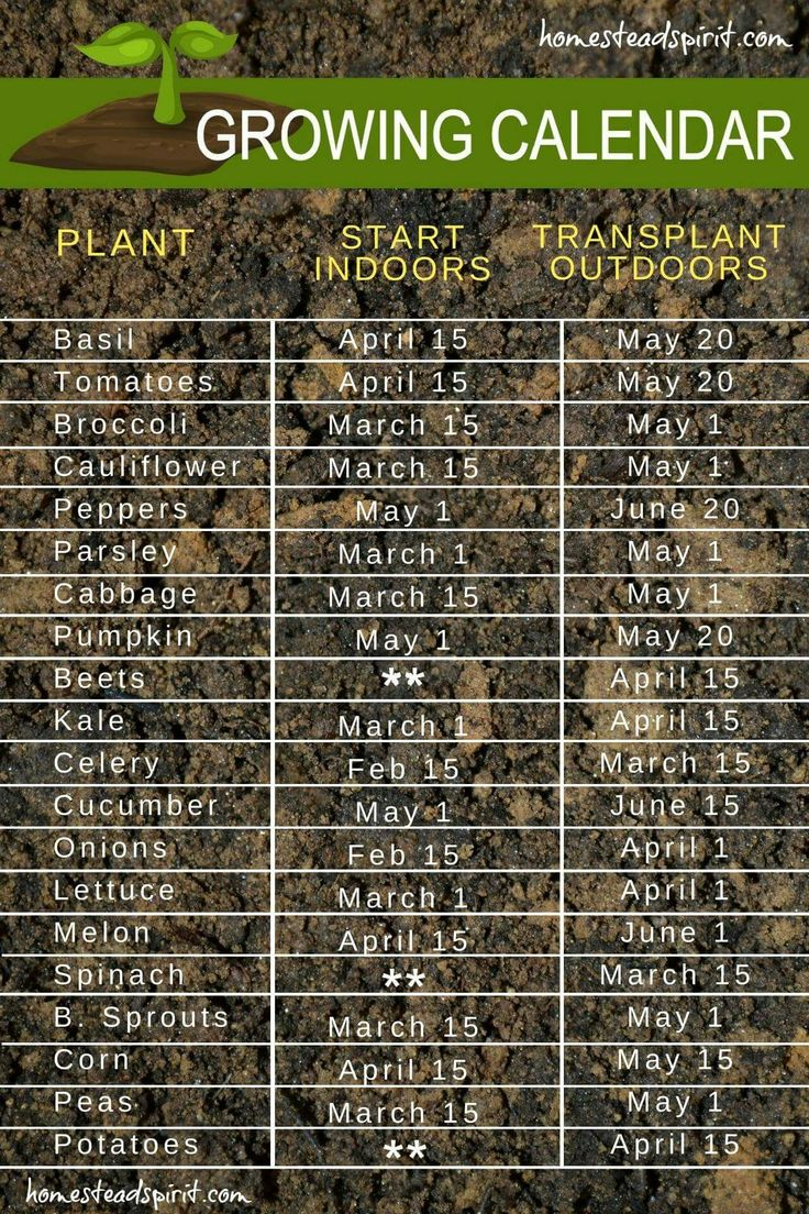 How To Start Gardening Vegetables Part - 34: Planting Schedule And Calendar