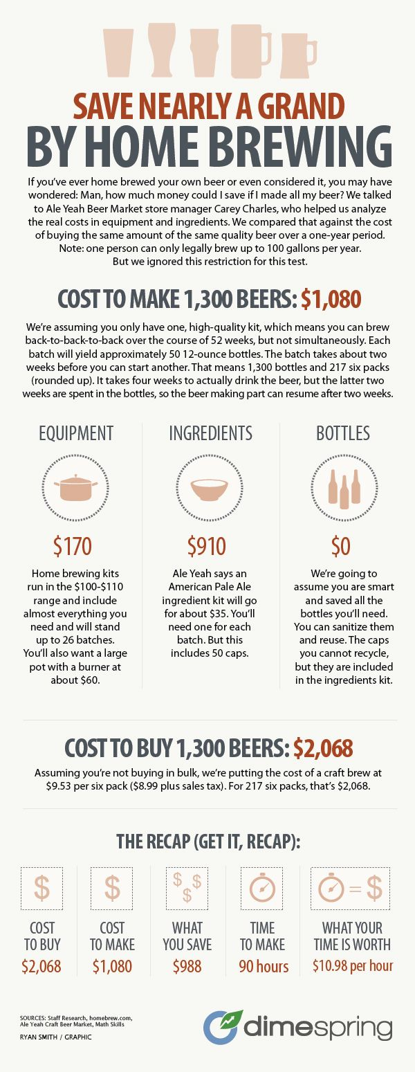 How much can you save by brewing your own beer i guess it for How to brew your own craft beer