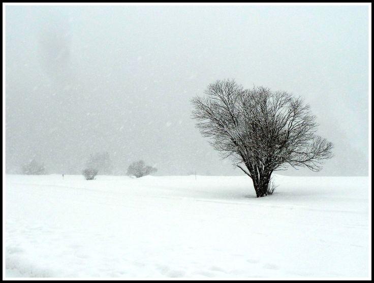 """#tempete  de #neige # - Le """"plateau"""" de #pralognan"""
