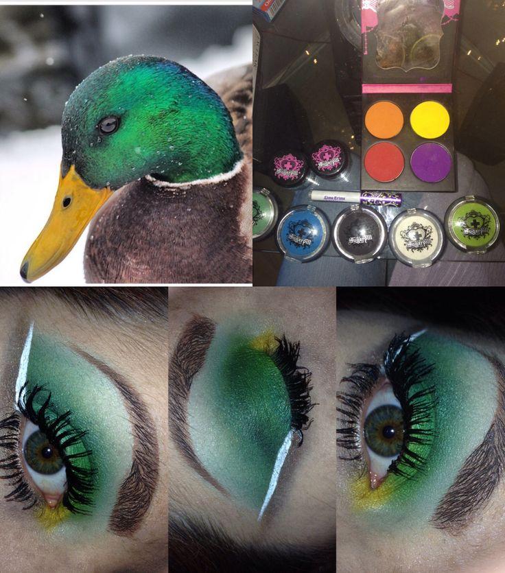 Mallard duck eyes