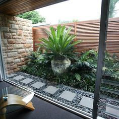 This is sort of what I am thinking for around our deck to back fence. Only have a small space. Maybe 1.5m.