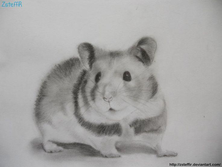 hamster tattoo - Busca de Google