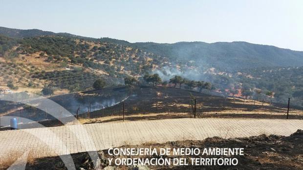 Desalojan diez viviendas por un incendio forestal en Villaharta