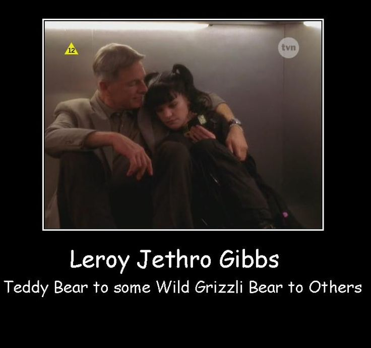 Leroy Jethro Gibbs - Teddy bear to some and wild grizzly to others!!! Do you know how true this is ohmygoodness!!!!