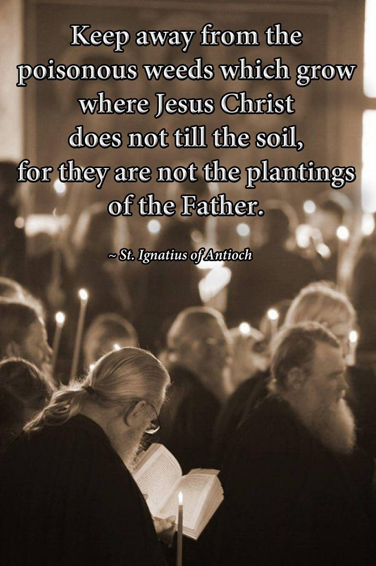 St Ignatius Quotes Pinterest'teki 25'den Fazla En Iyi St Ignatius Fikri