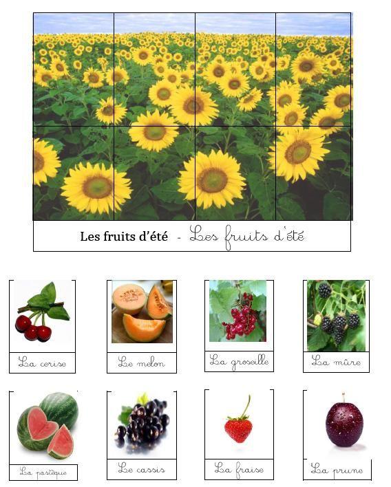 ovocie konzumované v lete