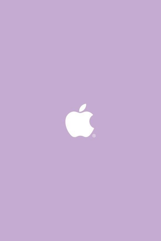 Apple iPhone Rose Wallpaper - Bing images