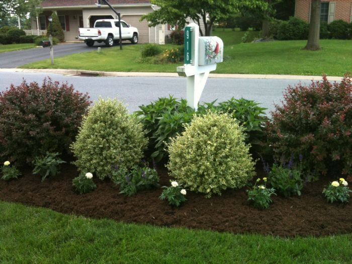 pictures of landscaping around mailboxes - Google Search ...