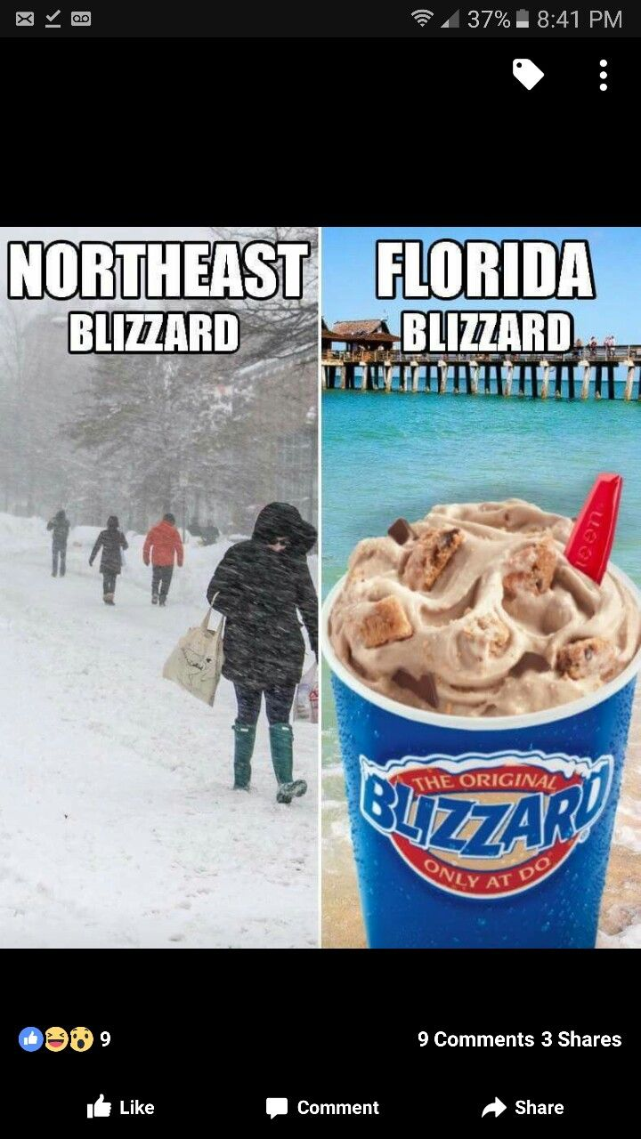 Pin by Helen Hudgins on florida memes in 2020 Florida