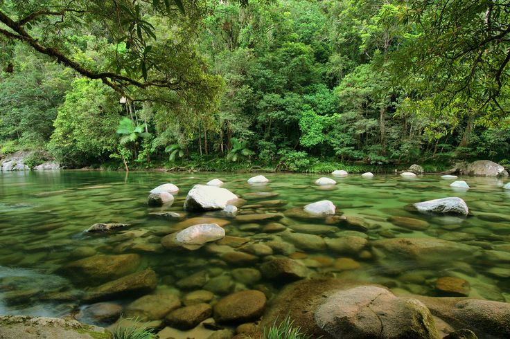 Mossman Gorge, Port Douglas, Australia