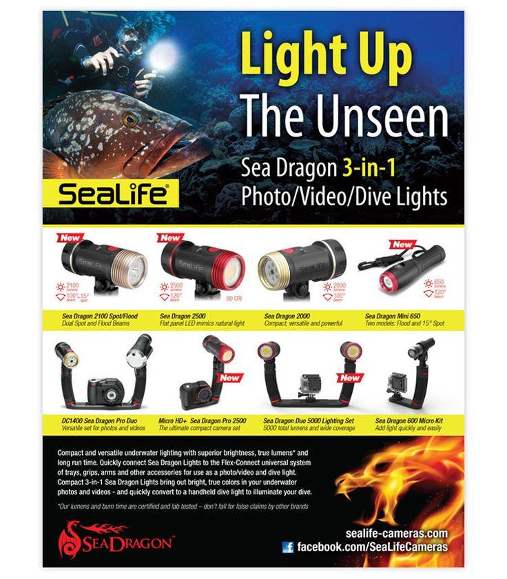 SeaLife Ad Gallery   Sealife Cameras