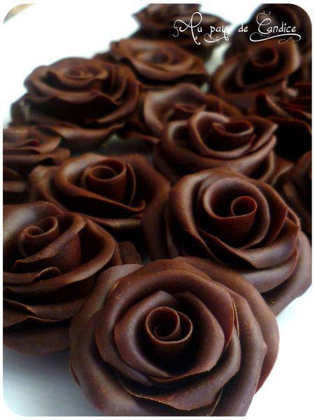 La pâte de chocolat (ou chocolat plastique) est une pâte souple que vous pouvez modeler (voir les roses que j'ai réalisées) ou utiliser pour recouvrir un gâteau ... et en plus elle a un bon goût de chocolat! Hummm!