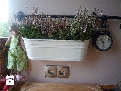 Śliwkowo - zdjęcie od Żaneta Śliwonik - Kuchnia - Styl Prowansalski - Żaneta Śliwonik