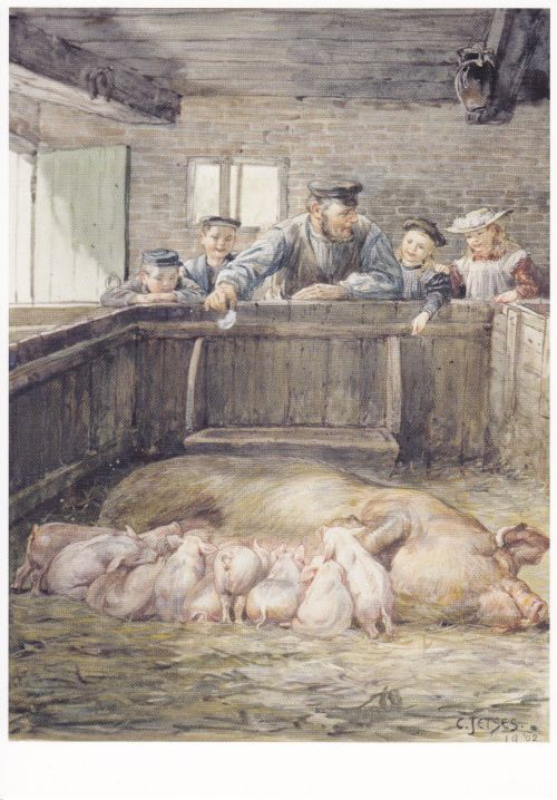 Ansicht en Postkaarten Verzameling. Met o.a. tekeningen van Cornelis Jetses. Aap…