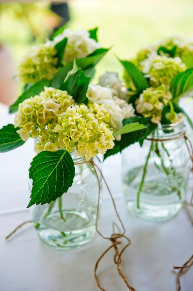 Green and white hydrangeas - wedding aisle flowers.Photographed by Shona Henderson Photography at Longview Vineyard. To see the full story or publish your wedding, visit Wedding Vault.