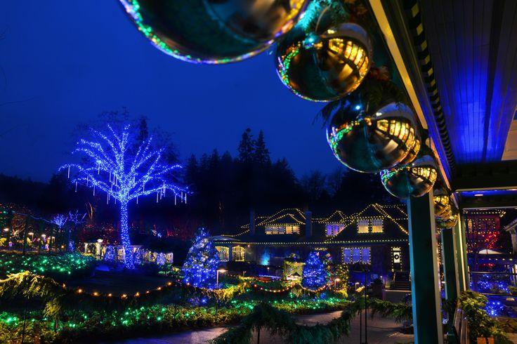 Buchart Gardens Christmas Lights