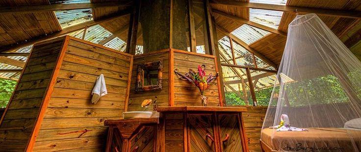 Au Costa Rica, on peut dormir au sommet des arbres   Mr Mondialisation