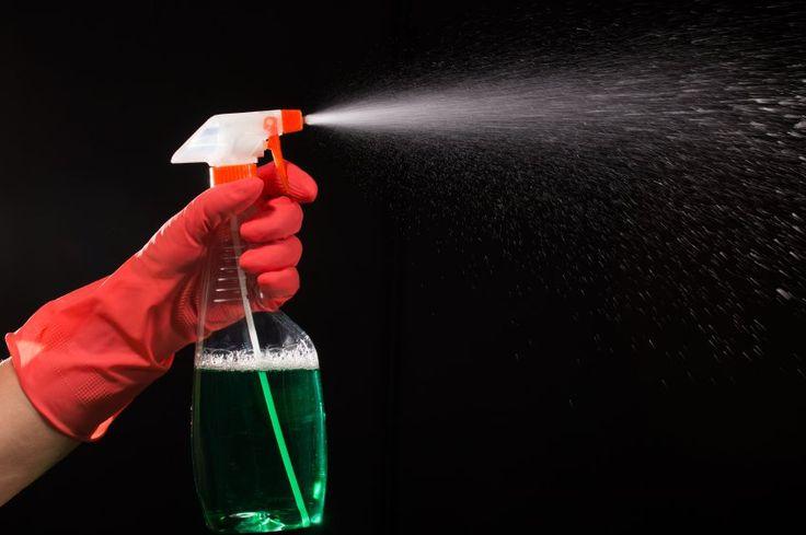 Mistura infalível para tirar o cheiro ruim da casa