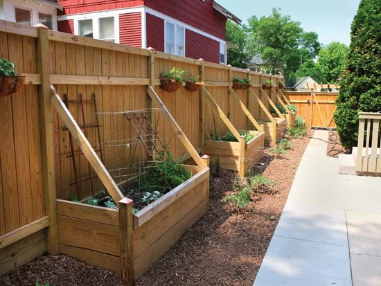 raised beds along fence