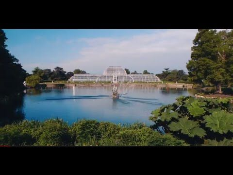 Visit Kew Gardens | One Of London's Top Tourist Attractions